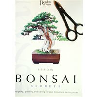 Bonsai Books - English