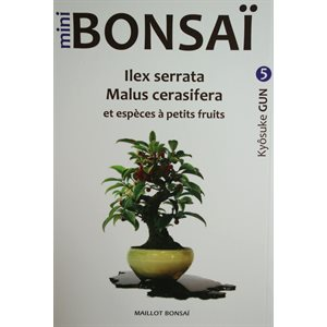 Mini-Bonsai - Malus Ilex - Kiosuke Gun